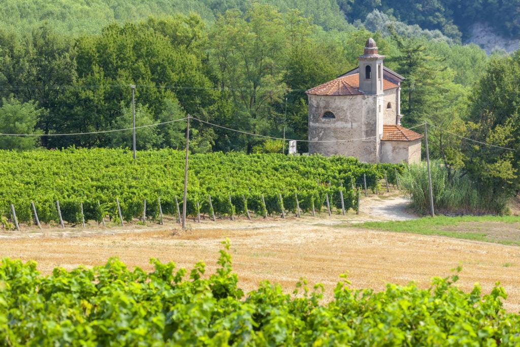 Vignobles autour de Montpellier