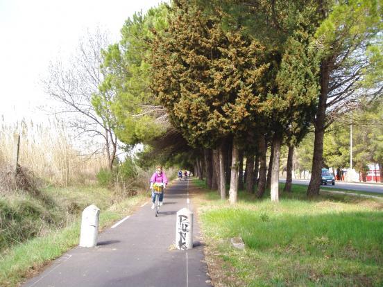 De Montpellier à Carnon