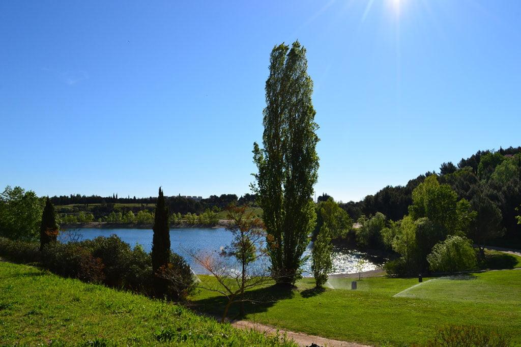3 lacs où se baigner à proximité de Montpellier