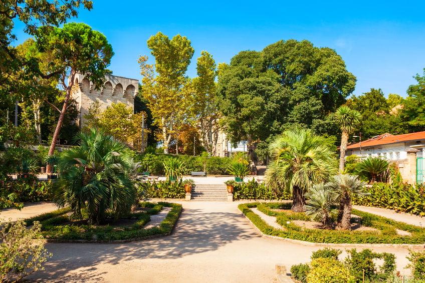 Visiter le jardin des plantes à Montpellier